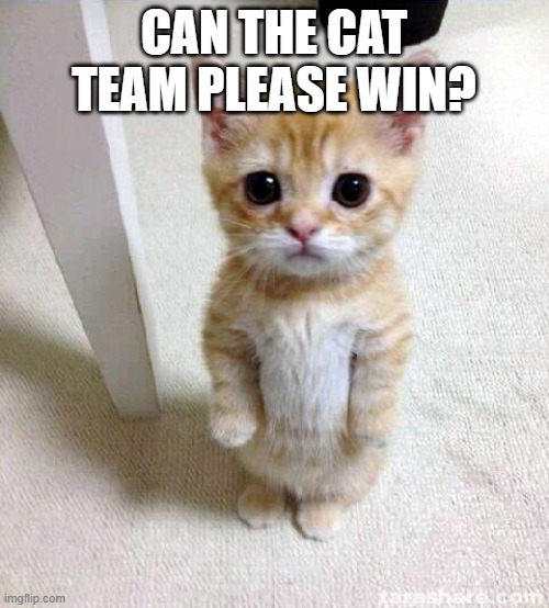 Cute Cat Meme | CAN THE CAT TEAM PLEASE WIN? | image tagged in memes,cute cat | made w/ Imgflip meme maker