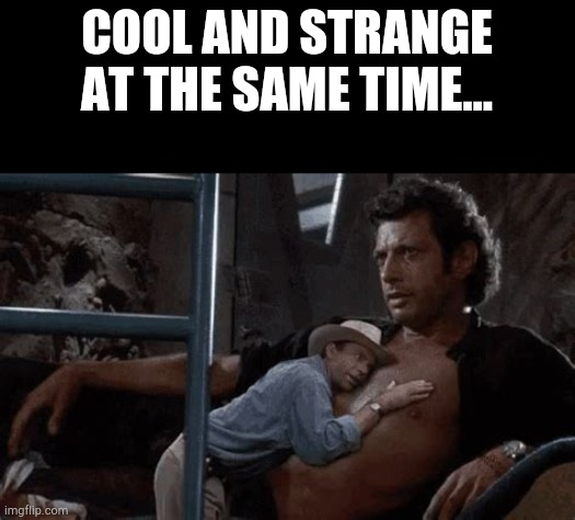 Life uhh finds a way. |  COOL AND STRANGE AT THE SAME TIME... | image tagged in jeff goldblum,jurassic park,ian malcolm,funny,memes,sam neill | made w/ Imgflip meme maker