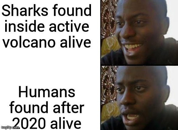 Sharks found inside active volcano alive; Humans found after 2020 alive | image tagged in blank white template,disappointed black guy | made w/ Imgflip meme maker