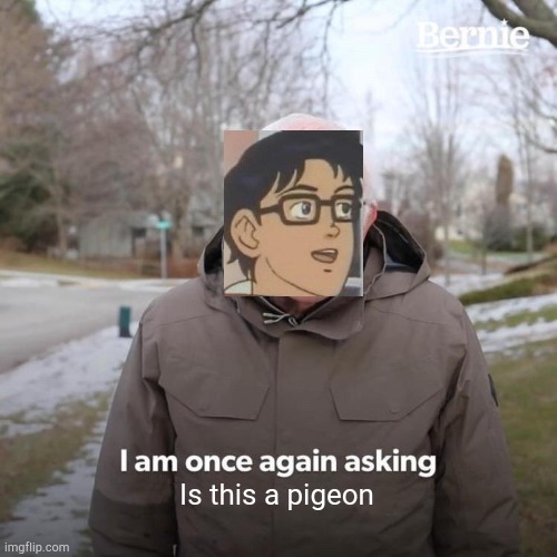 Is this bernie |  Is this a pigeon | image tagged in memes,bernie i am once again asking for your support,is this a pigeon | made w/ Imgflip meme maker