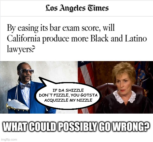 What could possibly go wrong? |  IF DA SHIZZLE DON'T FIZZLE, YOU GOTSTA ACQUIZZLE MY NIZZLE; WHAT COULD POSSIBLY GO WRONG? | image tagged in judge judy unimpressed | made w/ Imgflip meme maker