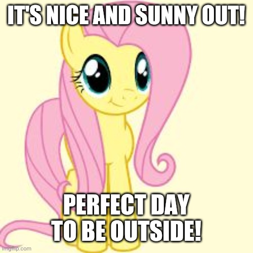 Go outside and get some GOOD fresh air! |  IT'S NICE AND SUNNY OUT! PERFECT DAY TO BE OUTSIDE! | image tagged in interested fluttershy,memes,outside,weather | made w/ Imgflip meme maker