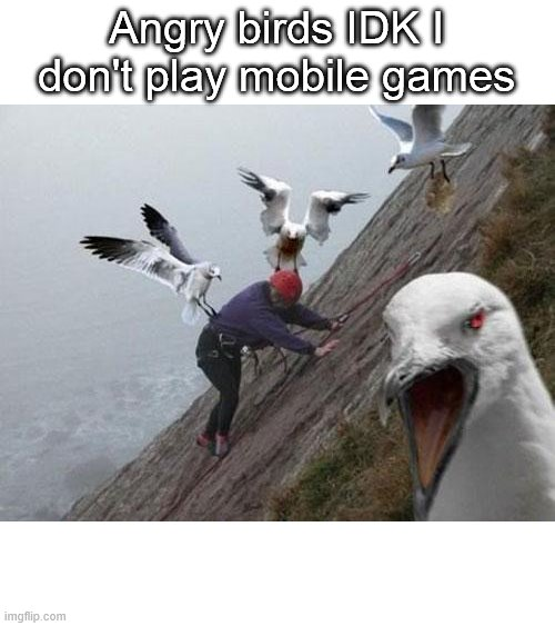 All the non-mobile gamers be like: |  Angry birds IDK I don't play mobile games | image tagged in angry birds,idk,mobile,video games | made w/ Imgflip meme maker