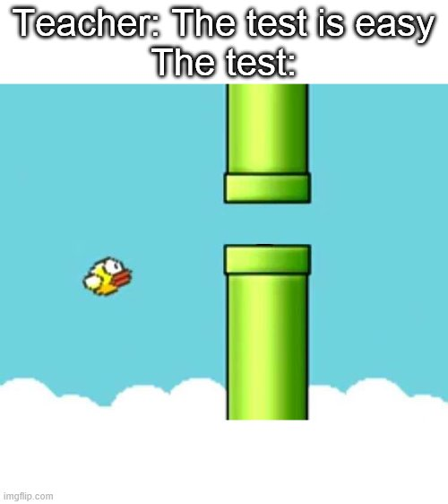 They say tests are easy. I wouldn't so sure. |  Teacher: The test is easy The test: | image tagged in fatigued flappy bird,school,test | made w/ Imgflip meme maker