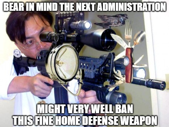 Enough is enough |  BEAR IN MIND THE NEXT ADMINISTRATION; MIGHT VERY WELL BAN THIS FINE HOME DEFENSE WEAPON | image tagged in memes,firearms,fun,funny,funny memes | made w/ Imgflip meme maker