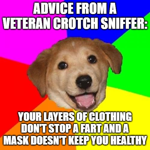 Advice Dog |  ADVICE FROM A VETERAN CROTCH SNIFFER:; YOUR LAYERS OF CLOTHING DON'T STOP A FART AND A MASK DOESN'T KEEP YOU HEALTHY | image tagged in memes,advice dog | made w/ Imgflip meme maker