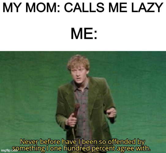 Never before have I been so offended by something I one hundred |  MY MOM: CALLS ME LAZY; ME: | image tagged in never before have i been so offended by something i one hundred | made w/ Imgflip meme maker