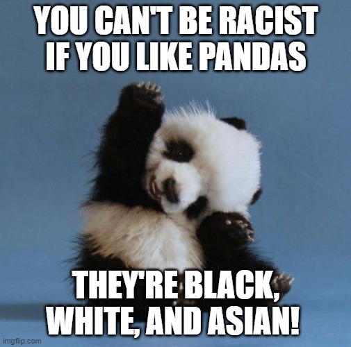 This is true in every sense! |  YOU CAN'T BE RACIST IF YOU LIKE PANDAS; THEY'RE BLACK, WHITE, AND ASIAN! | image tagged in panda,no racism,stupid people,race | made w/ Imgflip meme maker