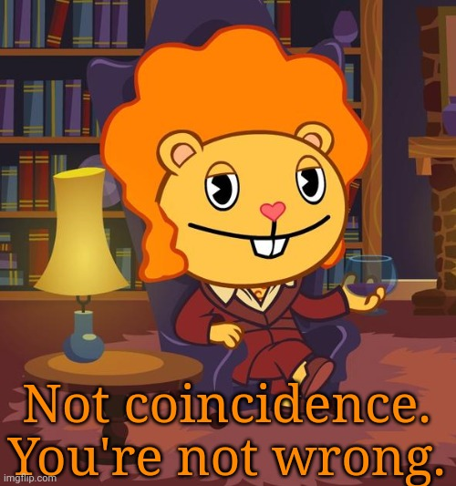 True Story Disco Bear (HTF) | Not coincidence. You're not wrong. | image tagged in true story disco bear htf | made w/ Imgflip meme maker