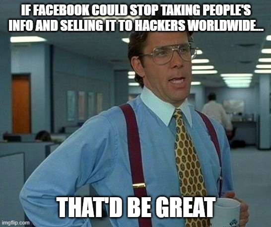 That Would Be Great Meme |  IF FACEBOOK COULD STOP TAKING PEOPLE'S INFO AND SELLING IT TO HACKERS WORLDWIDE... THAT'D BE GREAT | image tagged in memes,that would be great | made w/ Imgflip meme maker