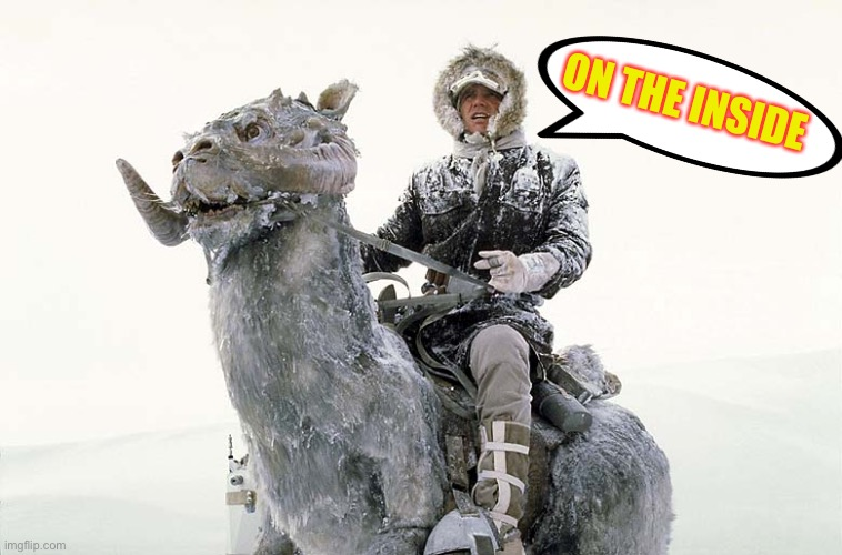 Han Solo hoth snow | ON THE INSIDE | image tagged in han solo hoth snow | made w/ Imgflip meme maker