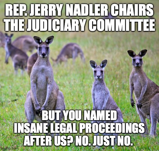 Jerry Nadler is no kangaroo. He's a jackass. (Due respect to real jackasses.) |  REP. JERRY NADLER CHAIRS THE JUDICIARY COMMITTEE; BUT YOU NAMED INSANE LEGAL PROCEEDINGS AFTER US? NO. JUST NO. | image tagged in kangaroos,congress,jerry nadler,democrats,stupid,leadership | made w/ Imgflip meme maker