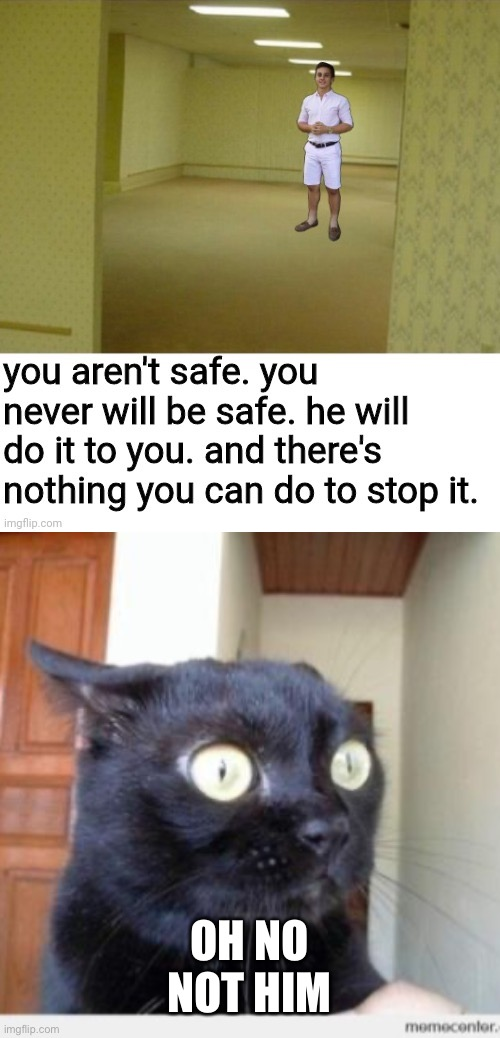 OH NO NOT HIM | image tagged in scared cat,memes,funny memes,cats,oh no | made w/ Imgflip meme maker