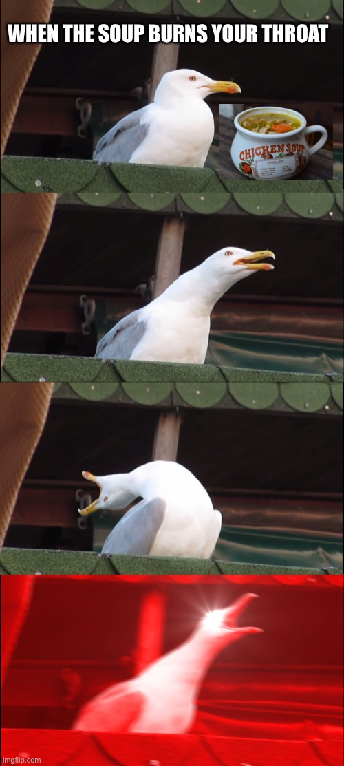 Inhaling Seagull Meme |  WHEN THE SOUP BURNS YOUR THROAT | image tagged in memes,inhaling seagull | made w/ Imgflip meme maker