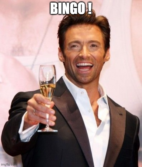 Hugh Jackman Cheers | BINGO ! | image tagged in hugh jackman cheers | made w/ Imgflip meme maker