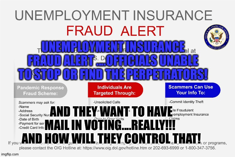 Fraud |  UNEMPLOYMENT INSURANCE FRAUD ALERT ....OFFICIALS UNABLE TO STOP OR FIND THE PERPETRATORS! AND THEY WANT TO HAVE MAIL IN VOTING....REALLY!!!  AND HOW WILL THEY CONTROL THAT! | image tagged in voter fraud | made w/ Imgflip meme maker