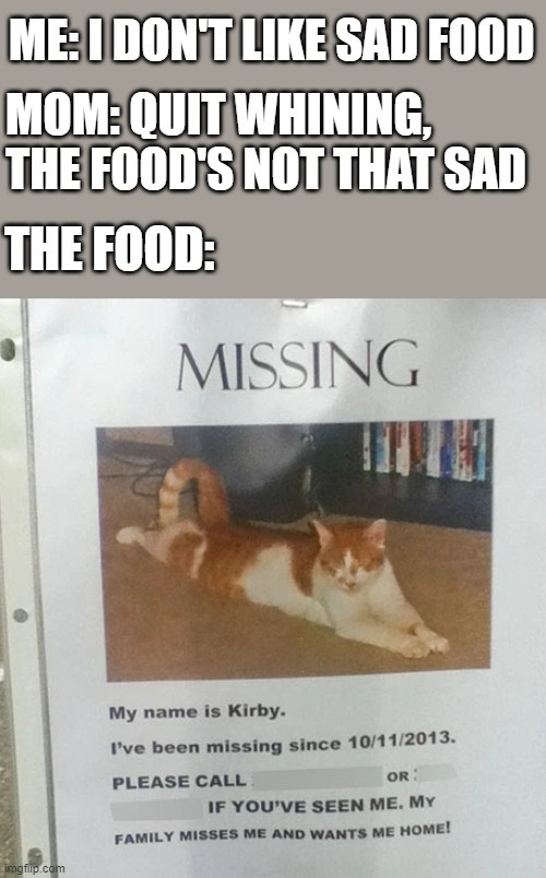 I saw a few missing cat posters in a neighborhood today. I'd like to think I'm a cold person, but these really do make me sad. | image tagged in cat,memes,sad,missing cat | made w/ Imgflip meme maker
