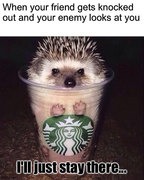 I'll just relax a moment till my enemy is long as gone as a bone |  When your friend gets knocked out and your enemy looks at you; I'll just stay there... | image tagged in starbucks' hedgehog,memes,funny,hedgehogs,enemy,scared | made w/ Imgflip meme maker
