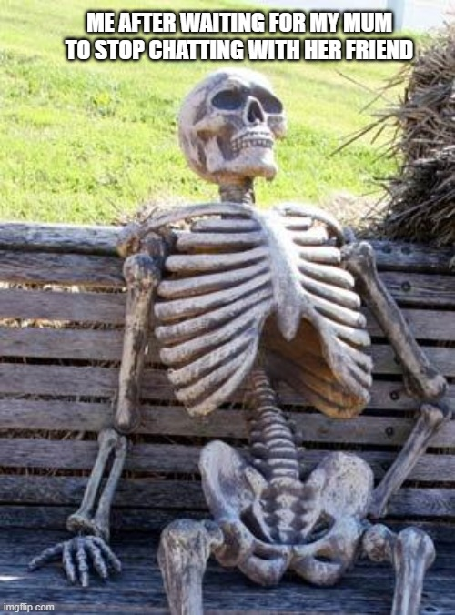 The longest wait |  ME AFTER WAITING FOR MY MUM TO STOP CHATTING WITH HER FRIEND | image tagged in memes,waiting skeleton | made w/ Imgflip meme maker