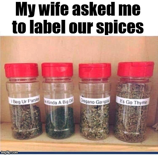 I am pretty sure I will not be asked to do that again. |  My wife asked me to label our spices | image tagged in spice,labels,bad puns | made w/ Imgflip meme maker