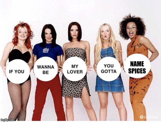 Spice Girls If You Wanna Be | NAME SPICES | image tagged in spice girls if you wanna be | made w/ Imgflip meme maker