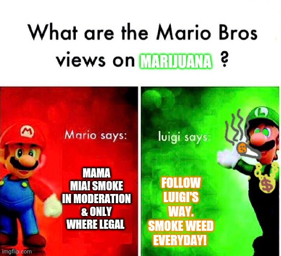 Mario Luigi |  MARIJUANA; MAMA MIA! SMOKE IN MODERATION & ONLY WHERE LEGAL; FOLLOW LUIGI'S WAY. SMOKE WEED EVERYDAY! | image tagged in mario luigi | made w/ Imgflip meme maker