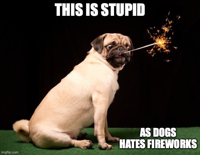 Pug With Sparks |  THIS IS STUPID; AS DOGS HATES FIREWORKS | image tagged in fireworks,memes,dog,pug,4th of july | made w/ Imgflip meme maker