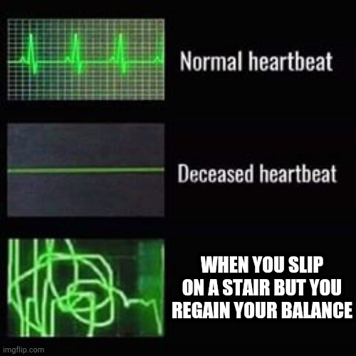 Have a fun time going down the rest of the steps :) |  WHEN YOU SLIP ON A STAIR BUT YOU REGAIN YOUR BALANCE | image tagged in heartbeat rate | made w/ Imgflip meme maker