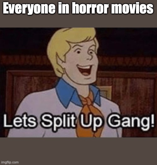 Everyone In Horror Movies |  Everyone in horror movies | image tagged in lets split up hang,horror movie,scooby doo | made w/ Imgflip meme maker
