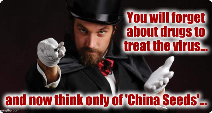 You will forget about drugs to treat the virus... and now think only of 'China Seeds'... | image tagged in china,seeds,magician | made w/ Imgflip meme maker