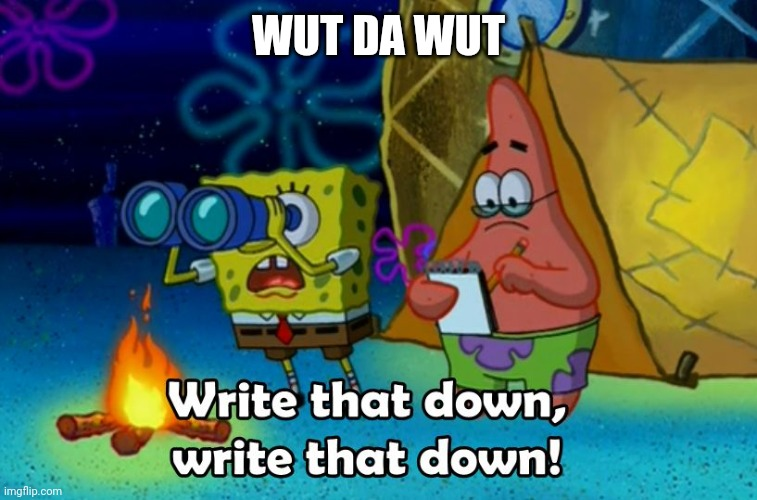 write that down | WUT DA WUT | image tagged in write that down | made w/ Imgflip meme maker