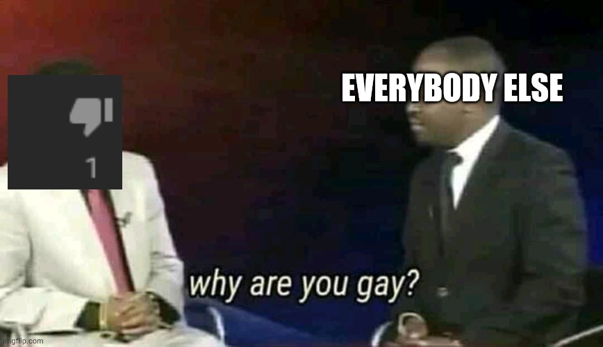 Why are you gay? |  EVERYBODY ELSE | image tagged in why are you gay | made w/ Imgflip meme maker