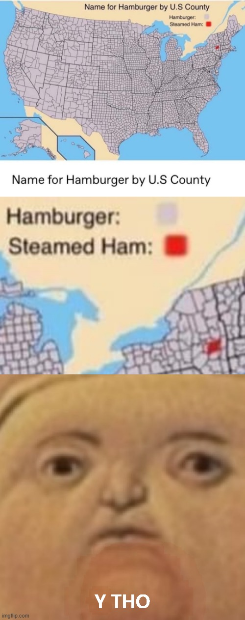 fat pope no want steamed ham |  Y THO | image tagged in y tho,but why tho,why tho,hamburger,hamburgers,new york | made w/ Imgflip meme maker