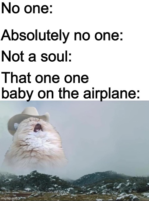 Y dis owas hapin? |  No one:; Absolutely no one:; Not a soul:; That one one baby on the airplane: | image tagged in screaming cowboy cat | made w/ Imgflip meme maker