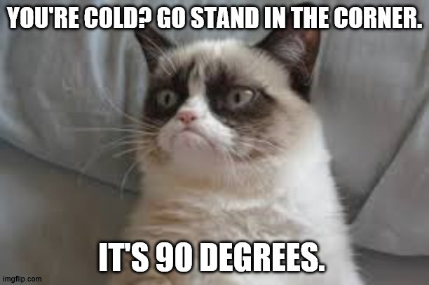 Cold |  YOU'RE COLD? GO STAND IN THE CORNER. IT'S 90 DEGREES. | image tagged in grumpy cat | made w/ Imgflip meme maker