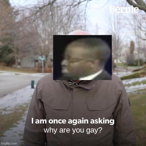 Bernie I Am Once Again Asking For Your Support |  why are you gay? | image tagged in memes,bernie i am once again asking for your support,why are you gay | made w/ Imgflip meme maker