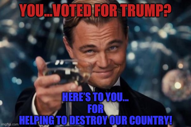Tuck your tail and run |  YOU...VOTED FOR TRUMP? HERE'S TO YOU... FOR HELPING TO DESTROY OUR COUNTRY! | image tagged in embarrassed starlight glimmer,politics,funny,donald trump,stupid | made w/ Imgflip meme maker