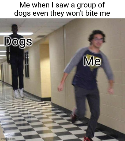 run |  Me when I saw a group of dogs even they won't bite me; Dogs; Me | image tagged in floating boy chasing running boy | made w/ Imgflip meme maker