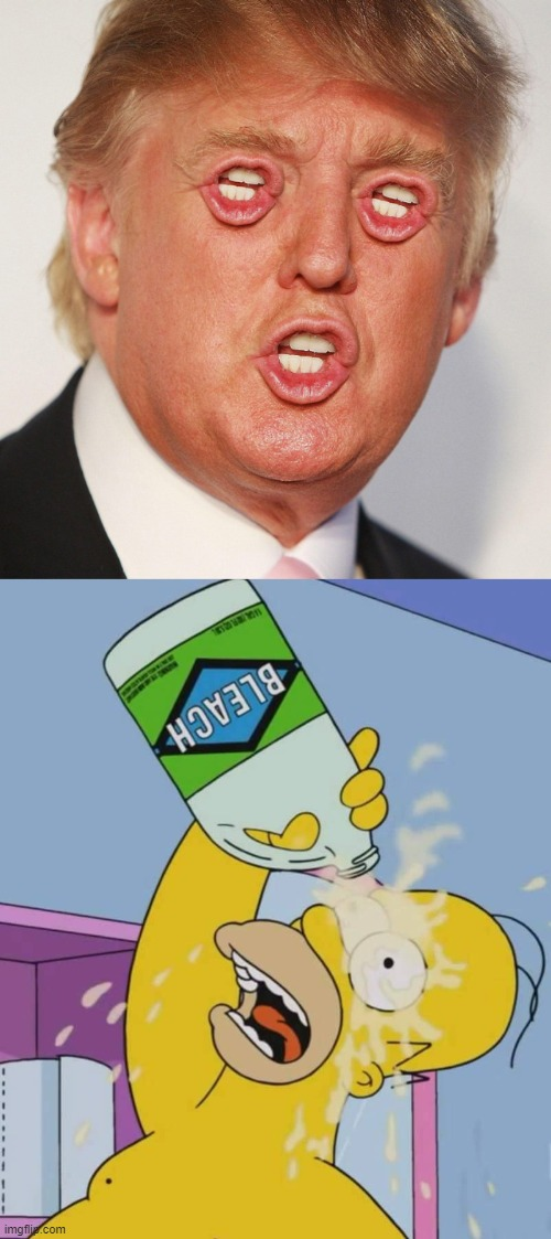 cursed donald trump | image tagged in homer with bleach,cursed,cursed image,curse,can't unsee | made w/ Imgflip meme maker
