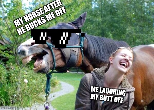 True Story! |  MY HORSE AFTER HE BUCKS ME OFF; ME LAUGHING MY BUTT OFF | image tagged in laughing horse | made w/ Imgflip meme maker