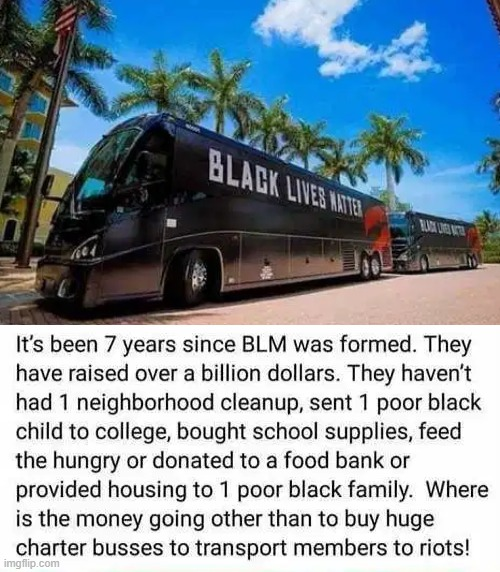 They are not helping the black community. | image tagged in blm,i don't think so,political | made w/ Imgflip meme maker