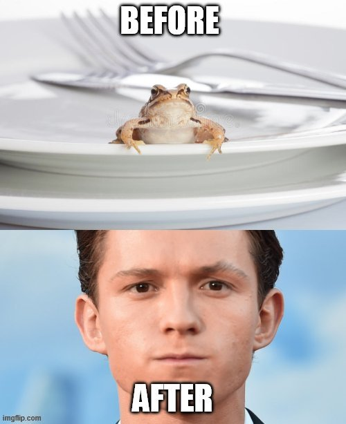 lol memes | image tagged in tom holland,spiderman peter parker | made w/ Imgflip meme maker
