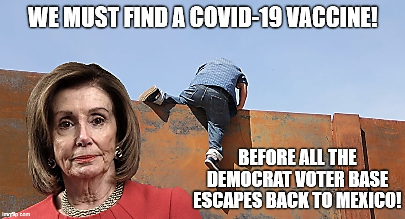 Democrat Voters Escape Over Wall Back to Mexico | WE MUST FIND A COVID-19 VACCINE! BEFORE ALL THE DEMOCRAT VOTER BASE ESCAPES BACK TO MEXICO! | image tagged in nancy pelosi at the southern border wall,illigal aliens,dreamers,daca,democrats,voters | made w/ Imgflip meme maker