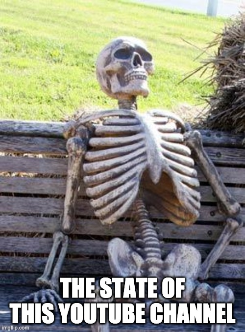 The Current State of My YouTube Channel |  THE STATE OF THIS YOUTUBE CHANNEL | image tagged in memes,waiting skeleton | made w/ Imgflip meme maker