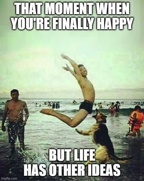 finally happy |  THAT MOMENT WHEN YOU'RE FINALLY HAPPY; BUT LIFE HAS OTHER IDEAS | image tagged in finally happy,life | made w/ Imgflip meme maker