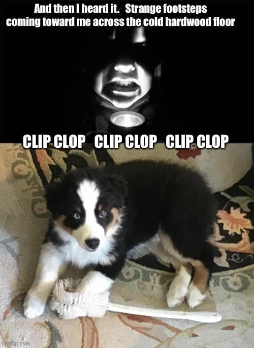 Scary Story |  And then I heard it.   Strange footsteps coming toward me across the cold hardwood floor; CLIP CLOP   CLIP CLOP   CLIP CLOP | image tagged in scary,mystery,cute puppy,true story | made w/ Imgflip meme maker