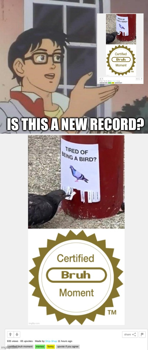 A frontpage meme made 11 hours ago, is this a new record? |  IS THIS A NEW RECORD? | image tagged in memes,is this a pigeon | made w/ Imgflip meme maker