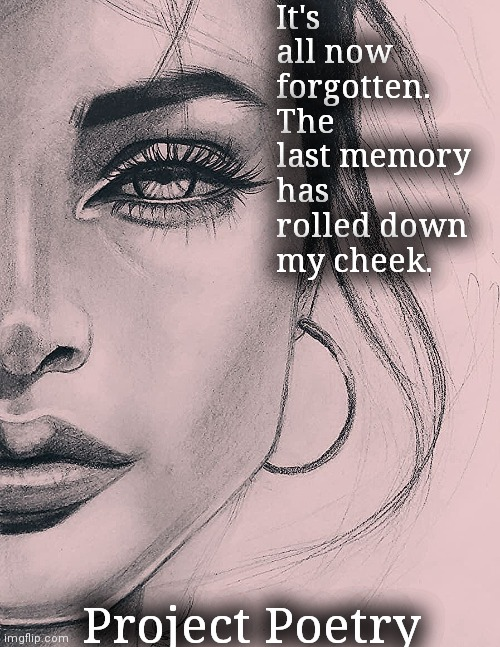 Project Poetry |  It's all now forgotten. The last memory has rolled down my cheek. Project Poetry | image tagged in poetry,memes,art | made w/ Imgflip meme maker