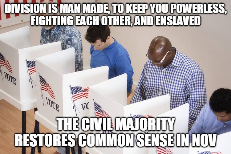 The Civil Majority |  DIVISION IS MAN MADE, TO KEEP YOU POWERLESS, FIGHTING EACH OTHER, AND ENSLAVED; THE CIVIL MAJORITY RESTORES COMMON SENSE IN NOV | image tagged in division,slave,civil majority,common sense,vote,trump | made w/ Imgflip meme maker
