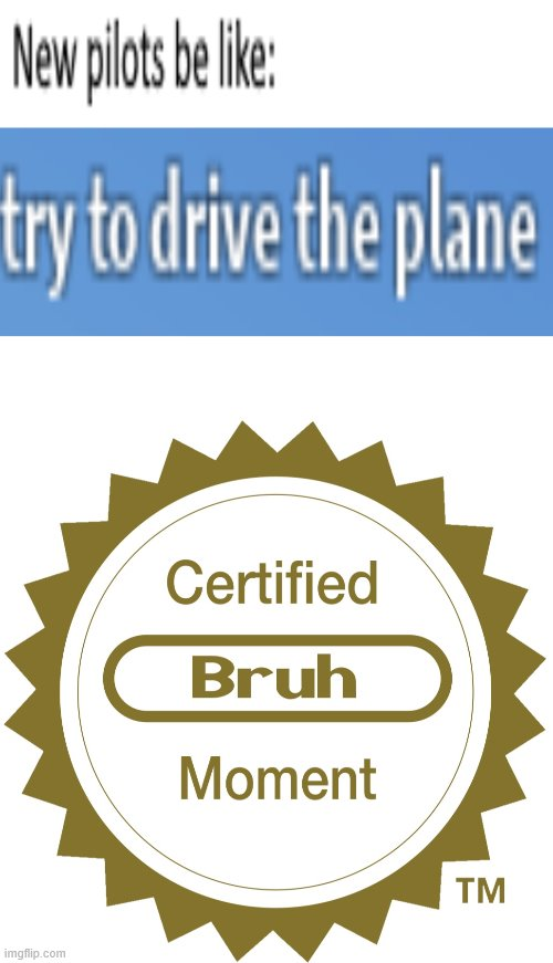 New pilots | image tagged in certified bruh moment,pilots,drive a plane,plane,airplane,aircraft | made w/ Imgflip meme maker